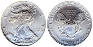 2007-Silver-Eagle