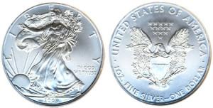 2009-Silver-Eagle
